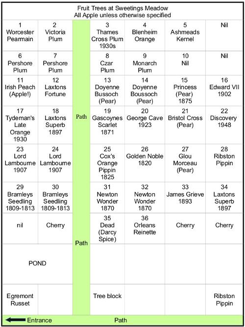 Fruit tree table